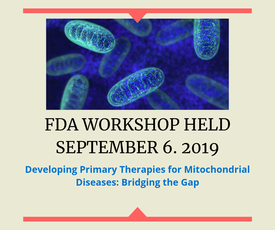 FDA WORKSHOP HELD SEPTEMBER 6. 2019.png